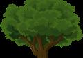השוואת מחירים גיזום עצים