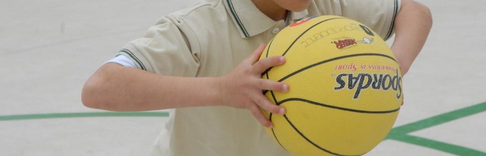 קייטנות כדורסל